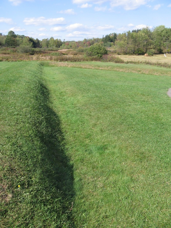 Earthen berms at Fort Necessity